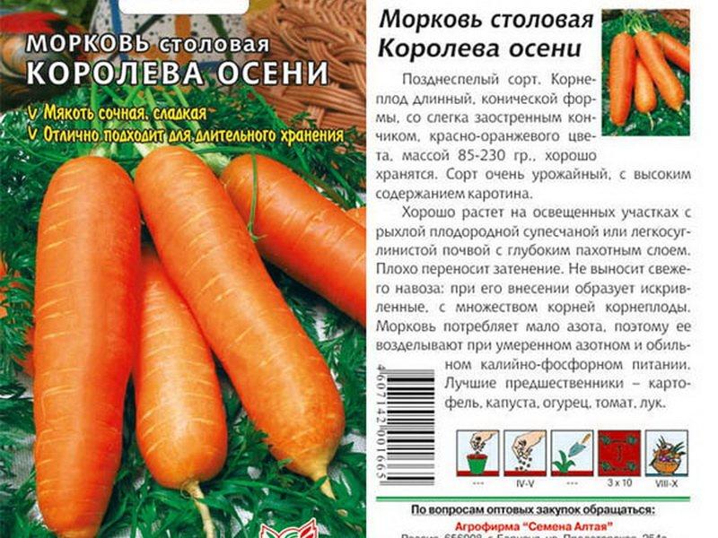 Семена моркови «Королева осени» на фото