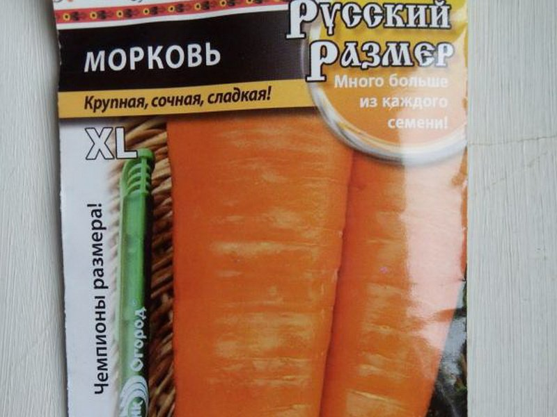 Семена моркови «Русский размер» на фото