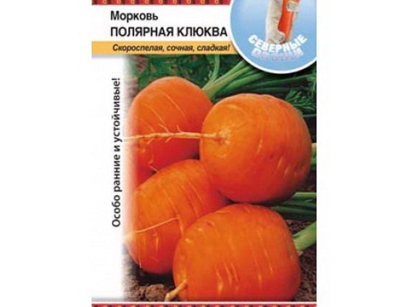 Семена моркови «Полярная клюква» на фото