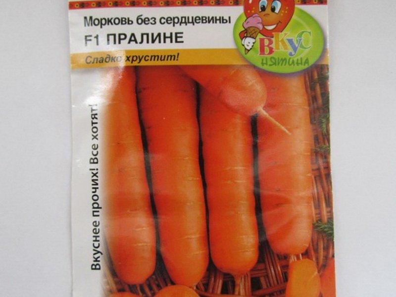 Семена моркови «Пралине» на фото