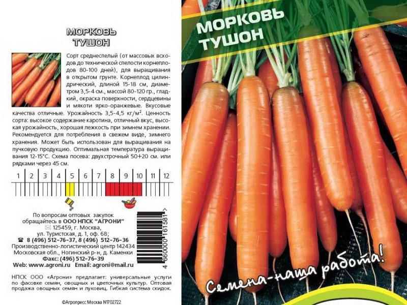 Семена моркови «Тушон» на фото
