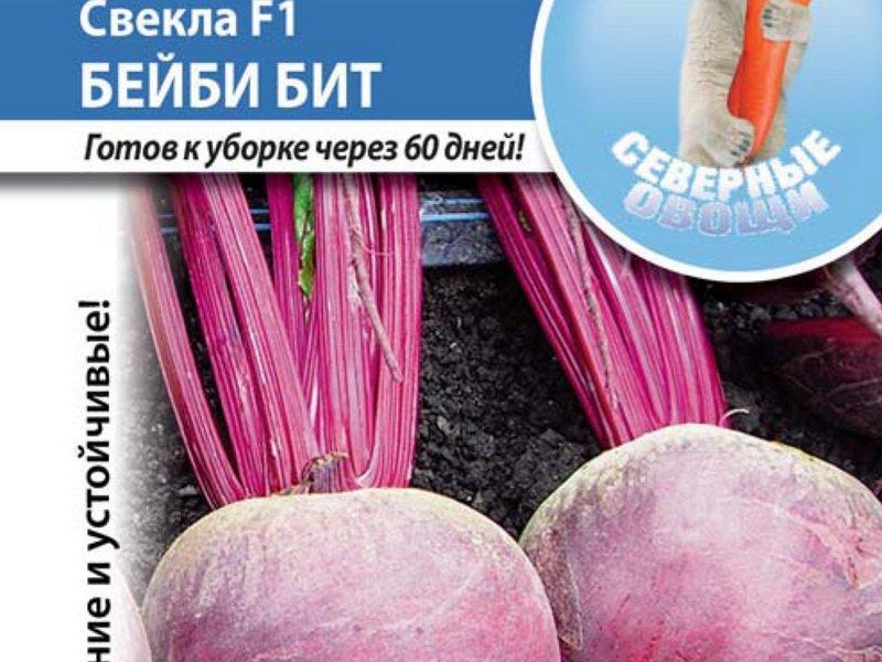 Семена свеклы «Бейби Бит» F1 на фото
