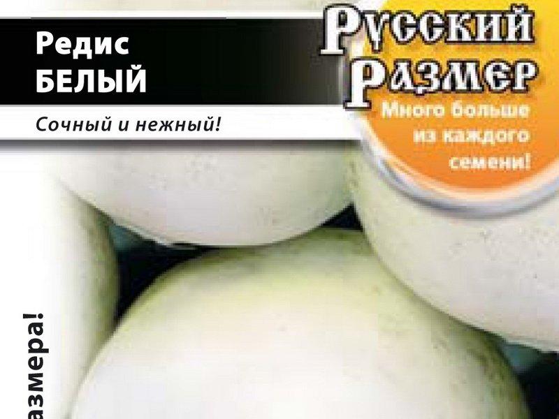 Семена редиса «Белый Русский размер» на фото