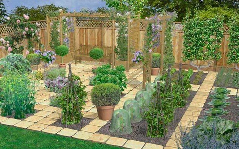 Как правильно разбить сад на дачном участке (с фото)