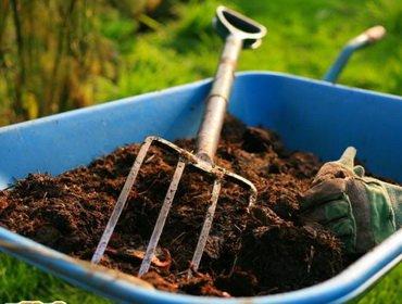 Способы ухода за почвой в саду