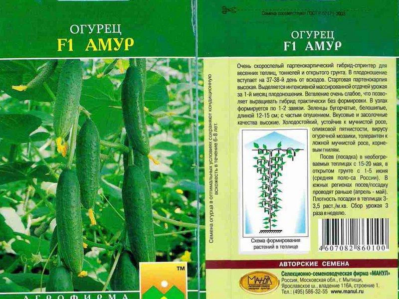Семена огурца «Амур» на фото