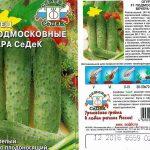 Огурец Ира характеристика и описание сорта урожайность с фото