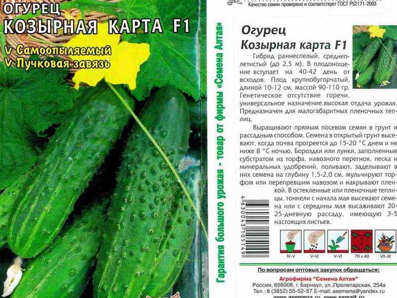 Семена огурца «Козырная карта» на фото