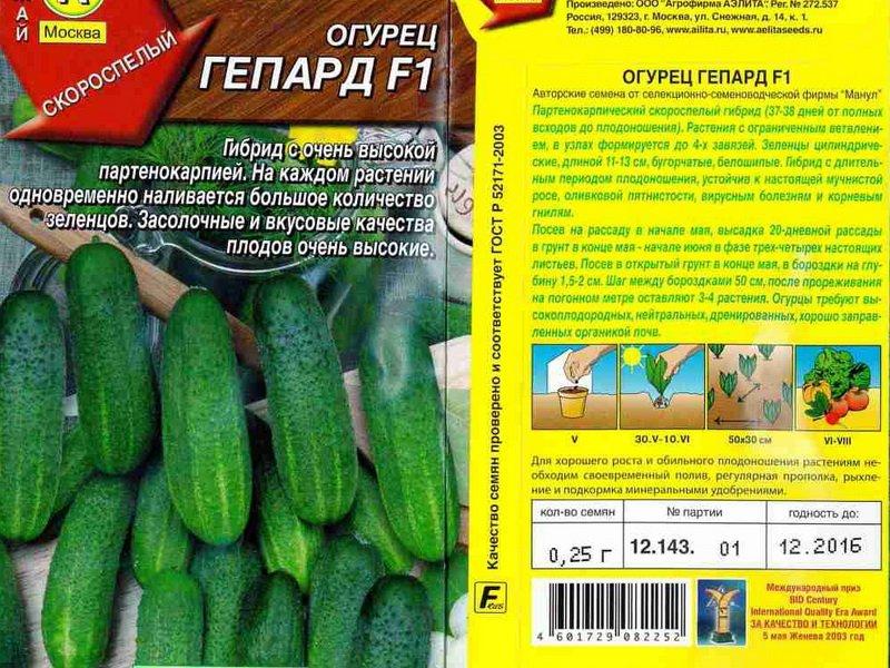 Семена огурца «Гепард» на фото