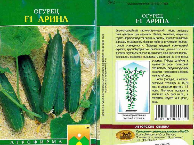 Семена огурца «Арина» F1 на фото