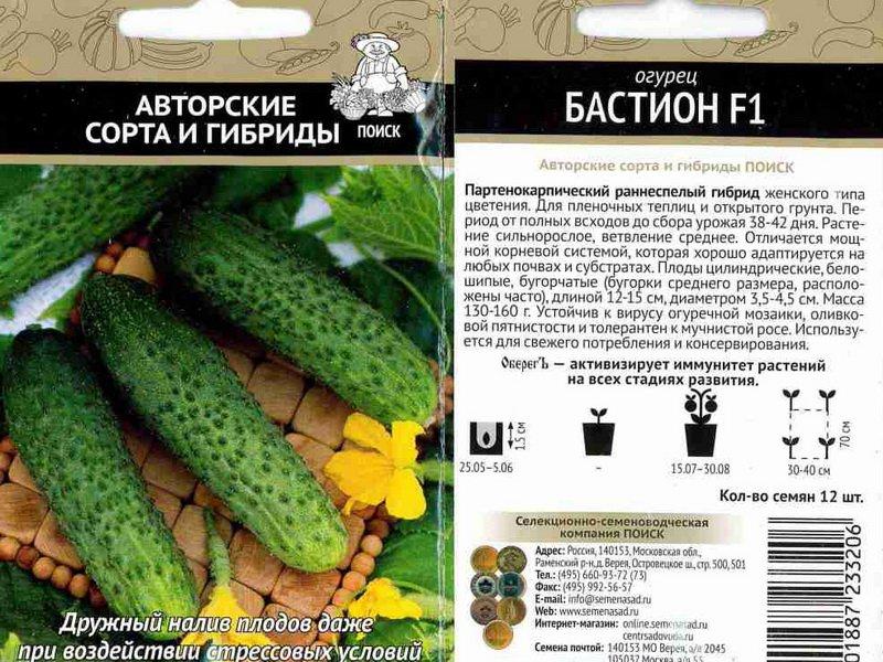 Семена огурца «Бастион» на фото