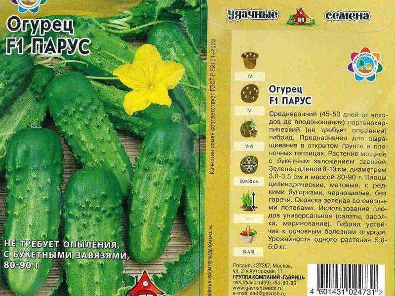 Семена огурца «Парус» F1 на фото
