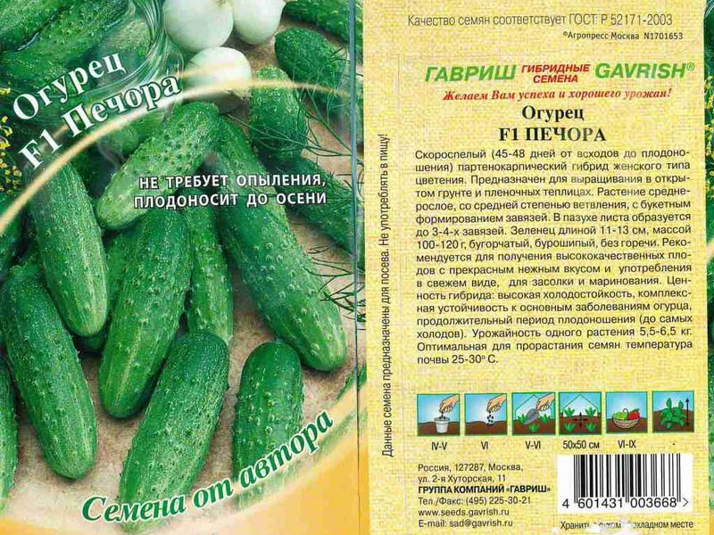 Семена огурца «Печора» F1 на фото