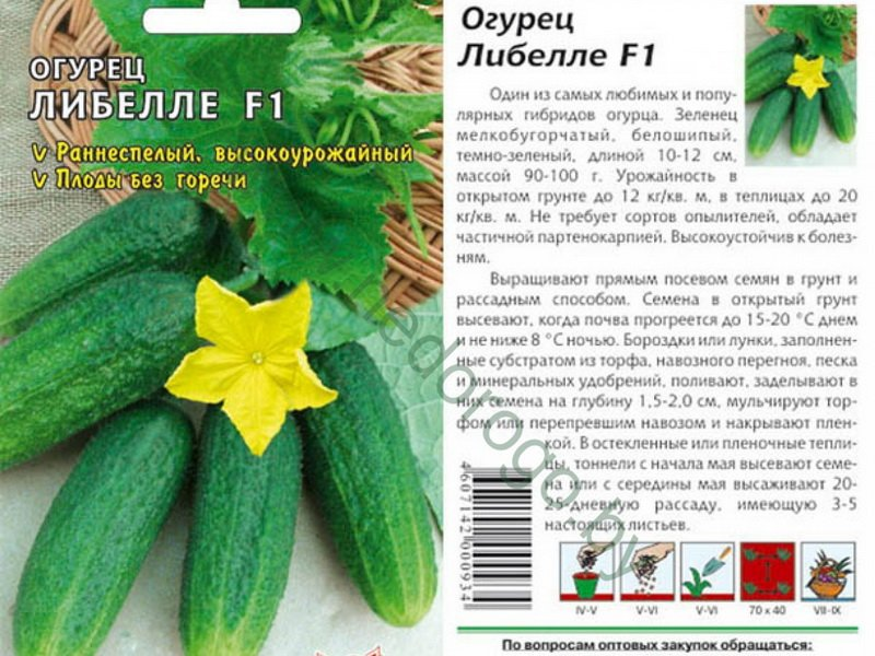 Семена огурца «Либелле» F1 на фото