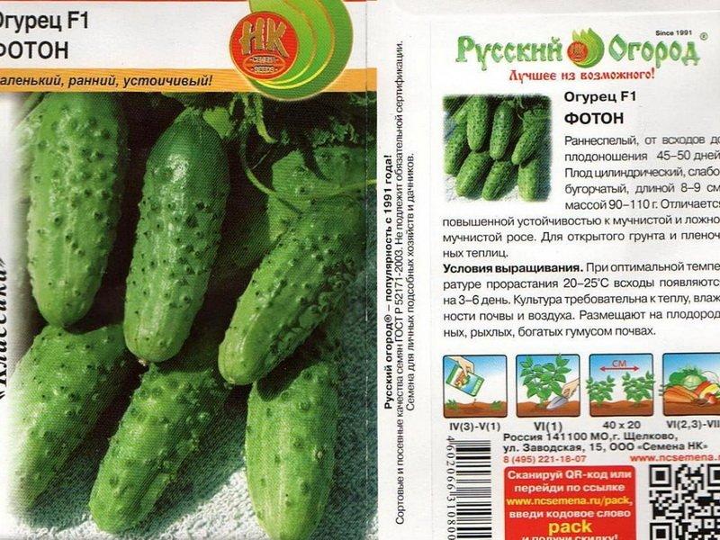 Семена огурца «Фотон» F1 на фото