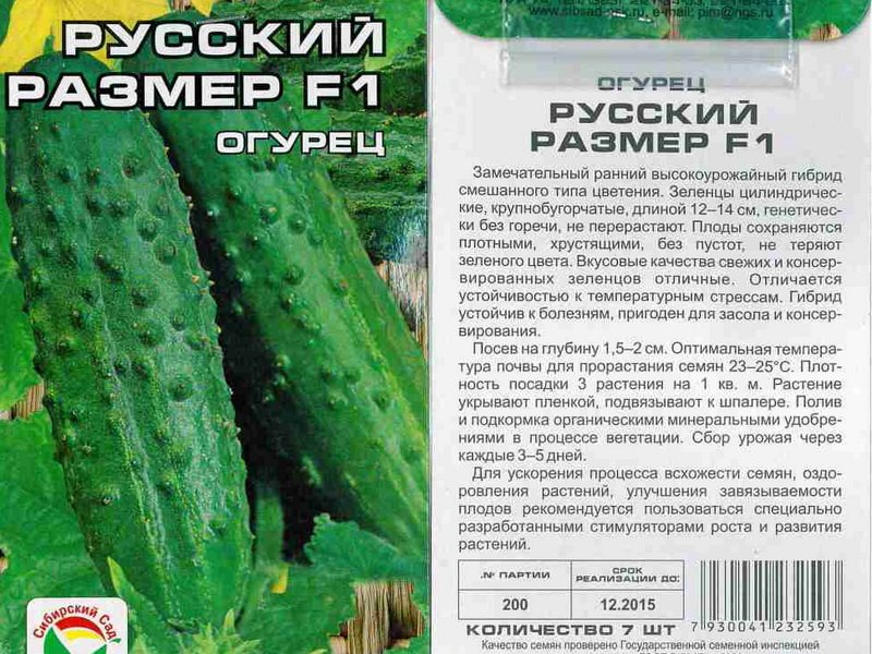 Семена огурца «Русский размер» F1 на фото