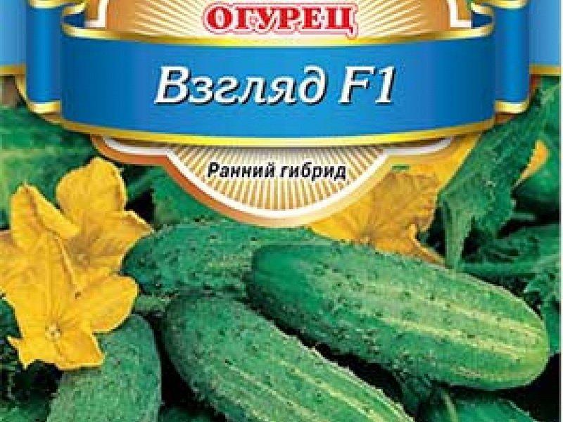Семена огурца «Взгляд» F1 на фото