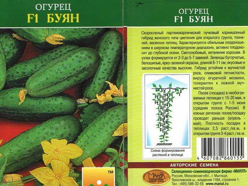 Семена огурца «Буян» на фото