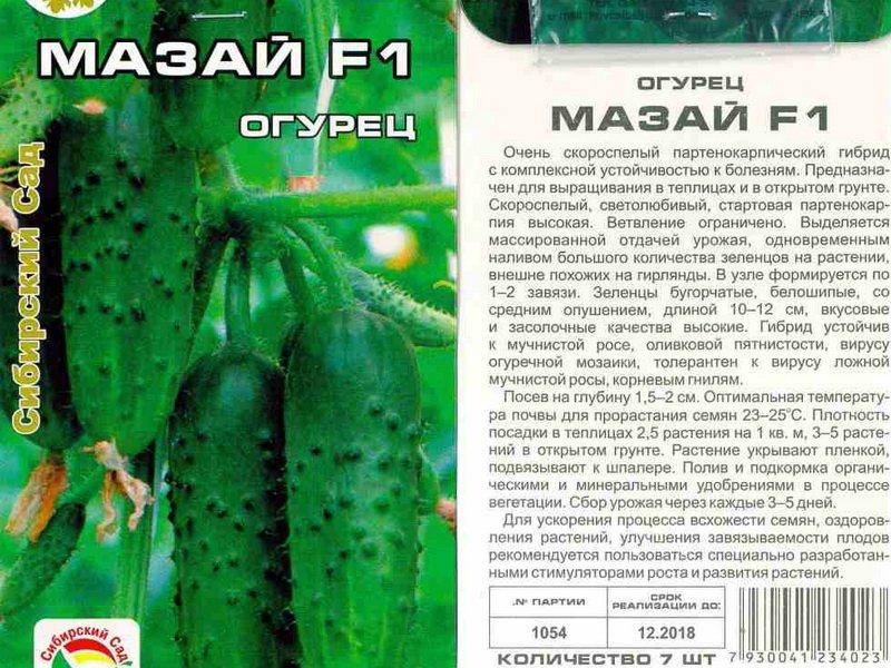 Семена огурца «Мазай» на фото