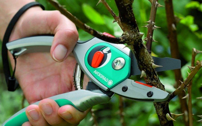 Как сделать секатор для обрезки деревьев своими руками
