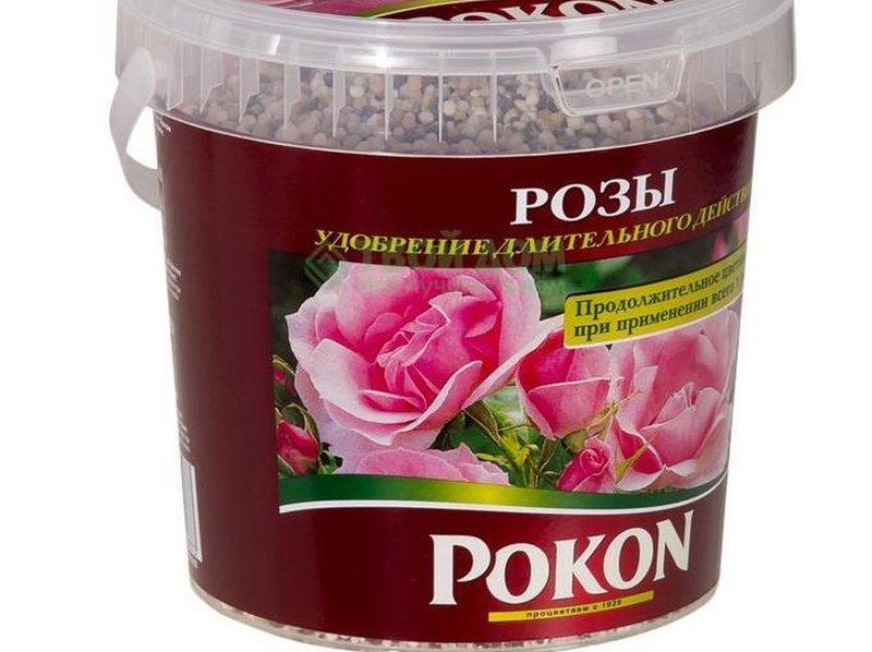 Какие ещё готовые удобрения вносить для подкормки роз в саду и дома