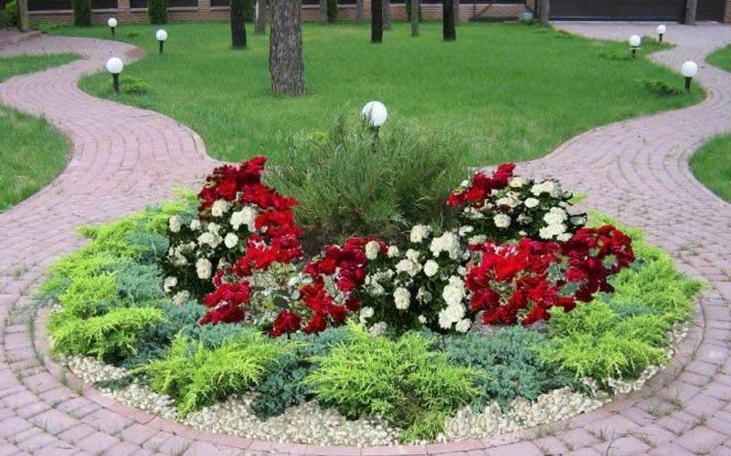 Ландшафтный дизайн сада: какие растения посадить с розами фото