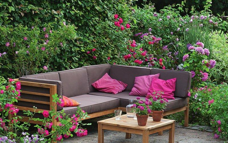 Нежно-розовые розы прекрасно смотрятся на фоне растений (фото)