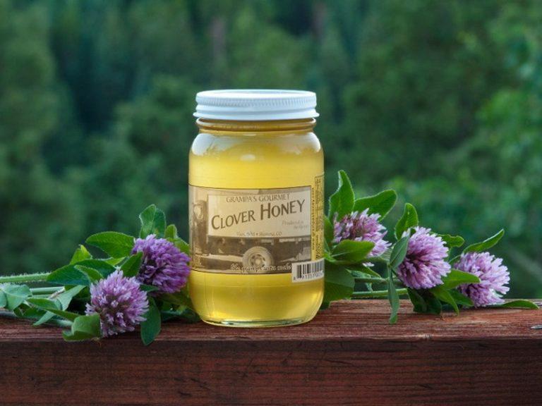 Как варить мед из клевера