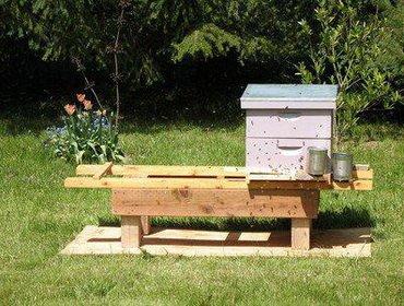 Время весенней выставки пчел из зимовника