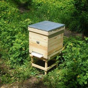 Содержание пчел в кассетных ульях фото