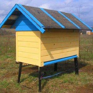 Пчеловодство для начинающих: размеры и требования к пчелиным ульям из пенополиуретана и пенополистирола