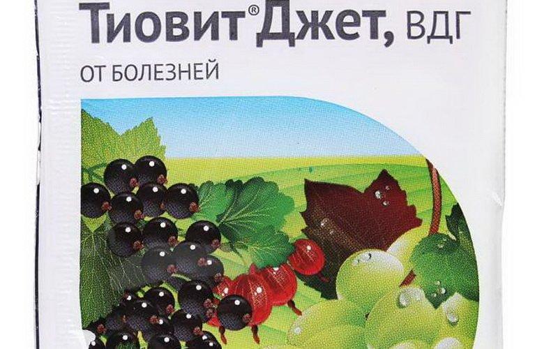 Средства защиты винограда «Тиовит Джет» на фото