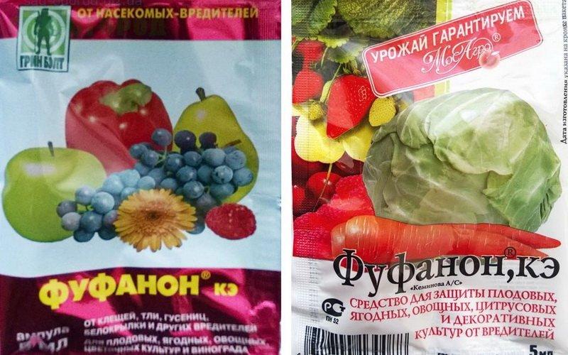 Средства защиты винограда «Фуфанон» на фото