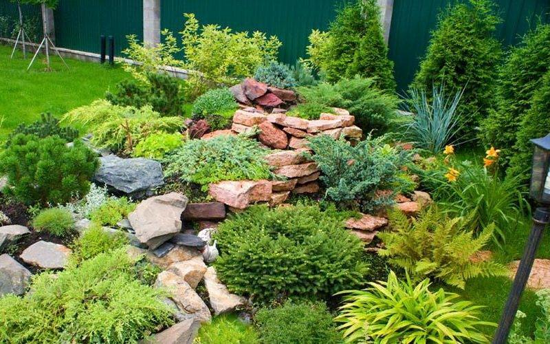 Типы каменистых садов фото