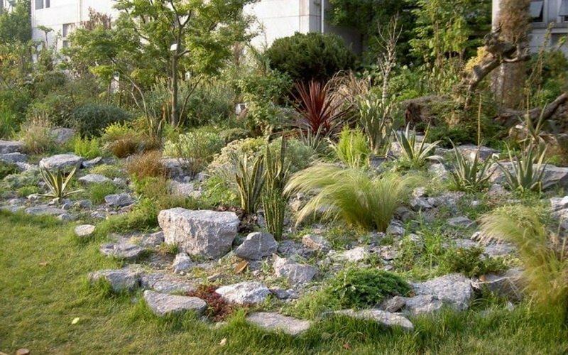 Украшение сада камнями и фото рокариев разных видов