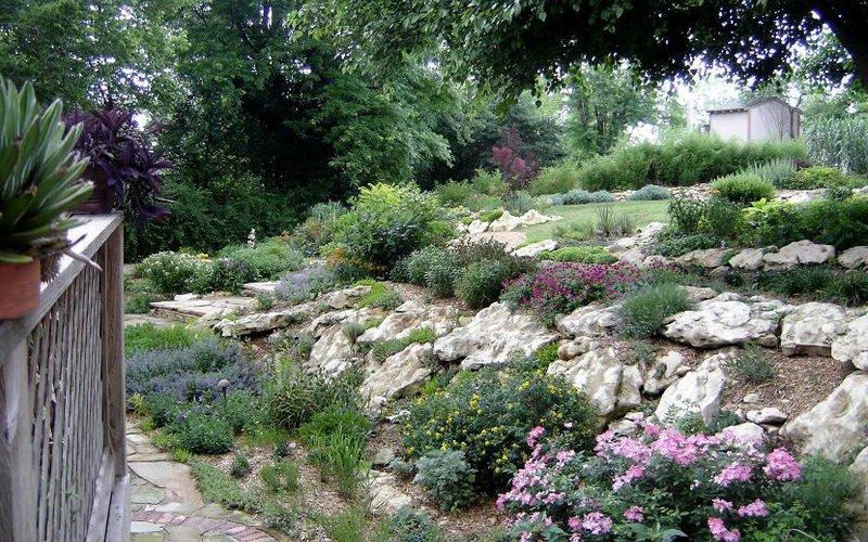 «Горный склон» – имитация альпийского высокогорья. На крупном покатом склоне вкопайте каменные глыбы, высадите возле них группы горных сосен, другие виды стелящихся хвойных, низкорослые рододендроны, верески, эрики.