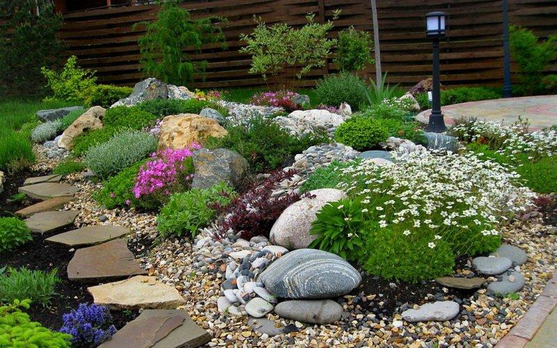 Функции растений для каменистого сада и альпийской горки