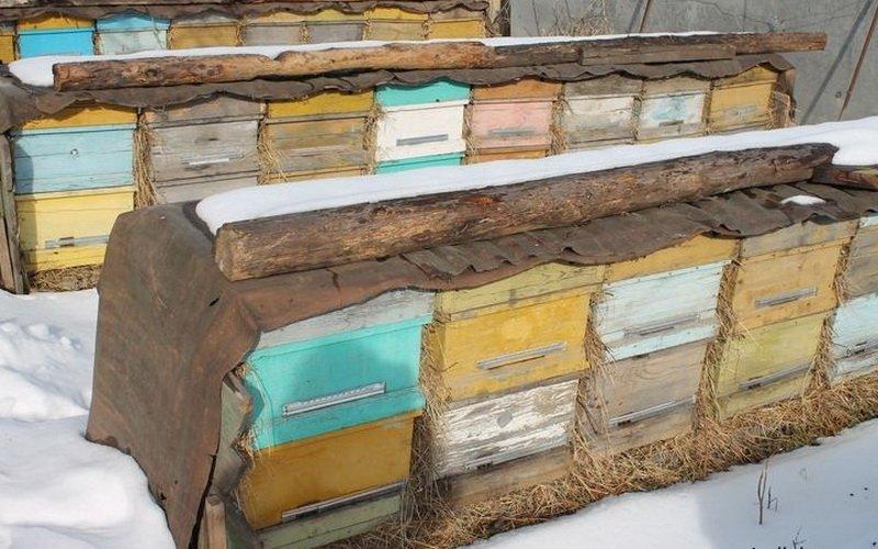 Утепление пчелиных ульев