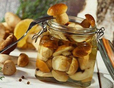 Заготовка грибов на зиму: домашние рецепты