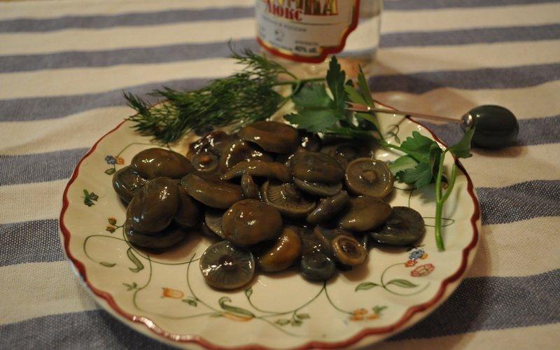 Способы заготовки грибов рыжиков фото