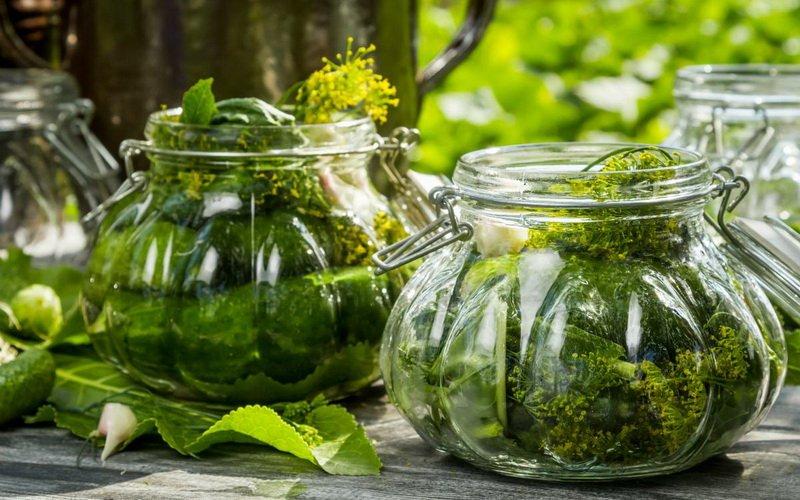 Маринованные огурцы с пряной зеленью.