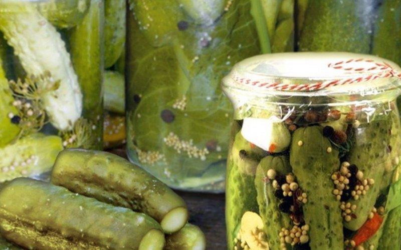 Маринованные огурцы с дубовой корой и горчицей.