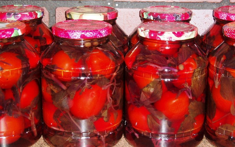 Как вкусно мариновать томаты на зиму фото