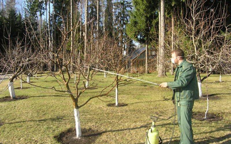 Методы защиты сельскохозяйственных растений