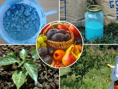 Химические средства защиты растений от вредителей и болезней