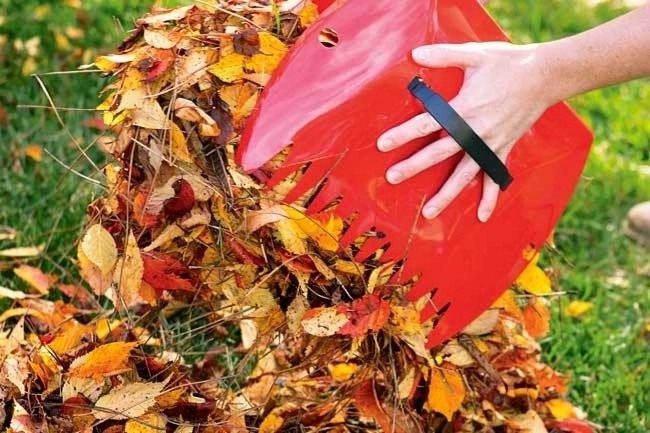 Уборка сухих листьев