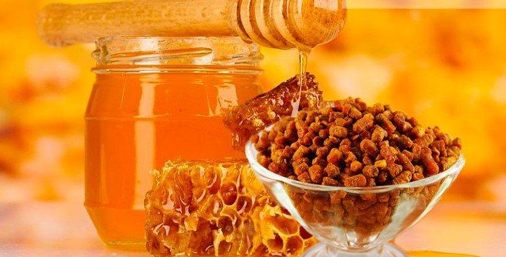 Перга и мёд