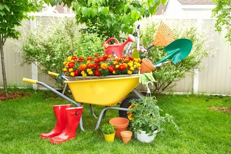 Благоприятные дни для огородников в сентябре — календарь