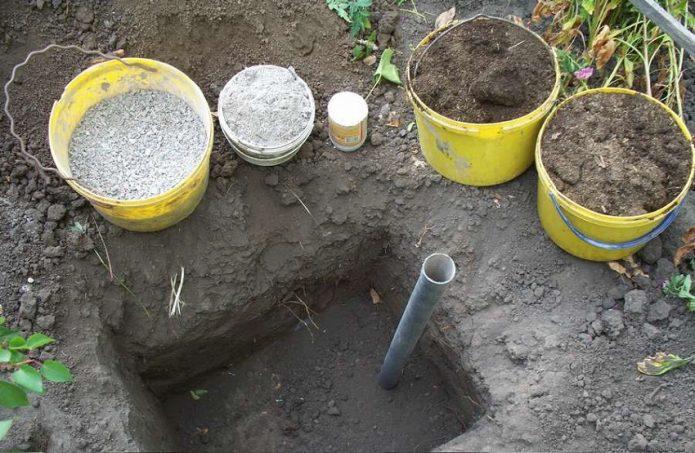 Удобрения и земля для закапывания саженцев