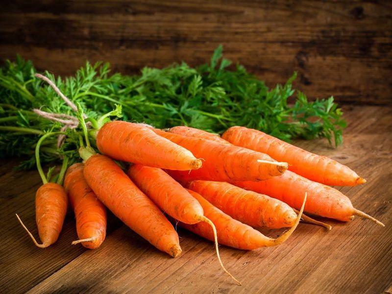 Лучшие сорта моркови 2019 года: самые сладкие корнеплоды